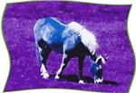 Grazing Blue Horse