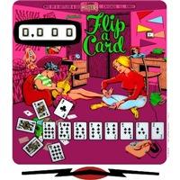 Gottlieb® Flip-A-Card