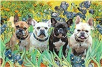 IRISES<br>Four French Bulldogs