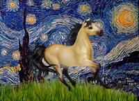 STARRY NIGHT & Buckskin Horse
