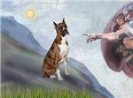 CREATION<br>& Brindle Boxer (crp)