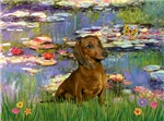 LILIES<br>& Red Dachshund