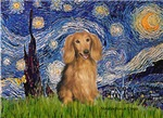 STARRY NIGHT<br>& Sable long haired Dachshund