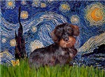 STARRY NIGHT<br>& Wire Haired Dachshund