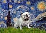 STARRY NIGHT<br>& White English Bulldog