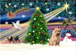 CHRISTMAS MAGIC<br> & Norfolk Terrier