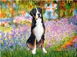 GARDEN AT GIVERNEY<br>Greater Swiss Mountain Dog
