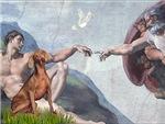 CREATION OF MAN<br>& Weimaraner