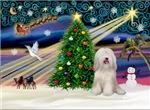 CHRISTMAS MAGIC<br>& Tibetan Terrier #2