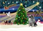 CHRISTMAS MAGIC<br>& Keeshond