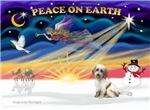 CHRISTMAS SUNRISE<br>& Tibetan Terrier