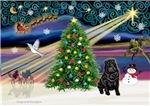 CHRISTMAS MAGIC<br>& Chinese Shar Pei