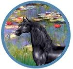 Black Arabian Horse<br>In Water Lilies