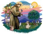 St. Francis #2<br>&Petit Basset #4