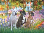 GARDEN AT GIVERNEY<br>& Three Boxers