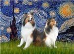 STARRY NIGHT<br>& Two Shetland Sheepdogs