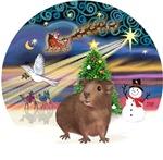 Christmas Magic<br>& Guinea Pig #3