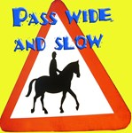 Pass Wide and Slow