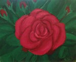 Big Red Rose