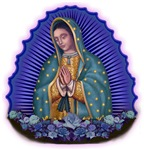Lady of Guadalupe T6