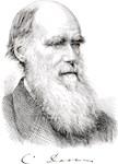 Darwin Portrait & Signature