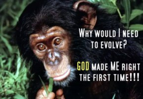 We Did Not Come From Monkeys