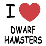 I heart dwarf hamsters