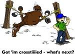 Horse in Cross Ties