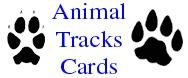 Animal Tracks and Pawprints Cards