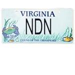 Virginia NDN Pride