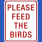 Please Feed the Birds