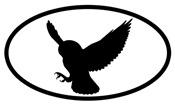 Snowy Owl Oval