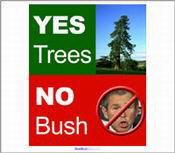 """Yes Trees.  No Bush."""