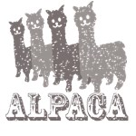 Alpaca4: Black