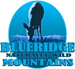 Blue Ridge Mountains NW (B)