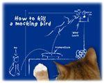 To Kill A Mockingbird ... by the Cat - Items & App