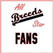 All Star Fans