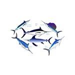 6 Billfish