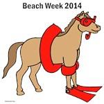 2014 Beach Week - Sea Horse