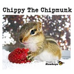 Chippy the Chipmunk