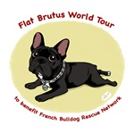 Flat Brutus Pet Products