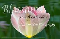 BLOSSOMS Calendars