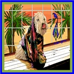 WHEATEN TERRIER:  AT THE SPA