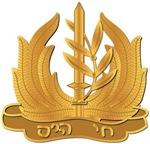 Israel - Navy Hat Badge - No Text