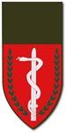 New SectionIsrael - Medical Tab - No Txt
