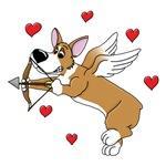 Valentine's Day Corgi