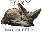 FOXY BUT SLEEPY...