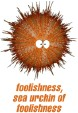 Sea Urchin of Foolishness Store