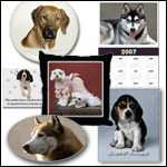 Dog Breed Photography