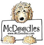 McDoodles Dogs